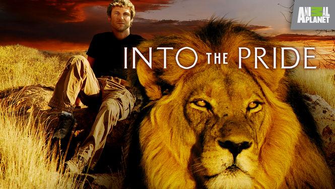 Netflix Serie - Into the Pride - Nu op Netflix
