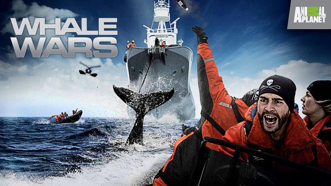 Netflix Serie - Whale Wars - Nu op Netflix