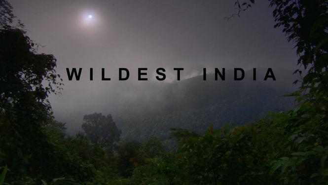 Netflix Serie - Wildest India - Nu op Netflix