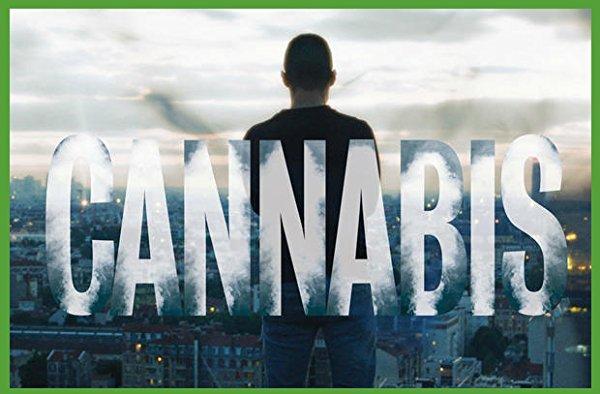 Netflix Serie - Cannabis - Nu op Netflix
