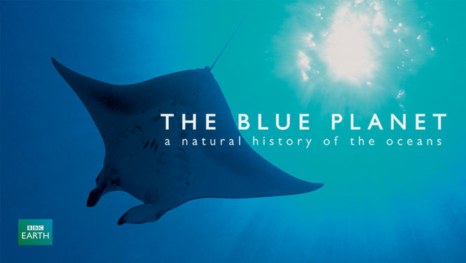 Netflix Serie - The Blue Planet: A Natural History of the Oceans - Nu op Netflix