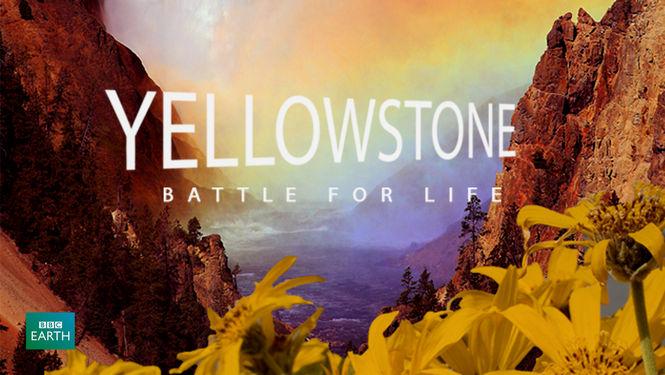 Netflix Serie - Yellowstone: Battle for Life - Nu op Netflix